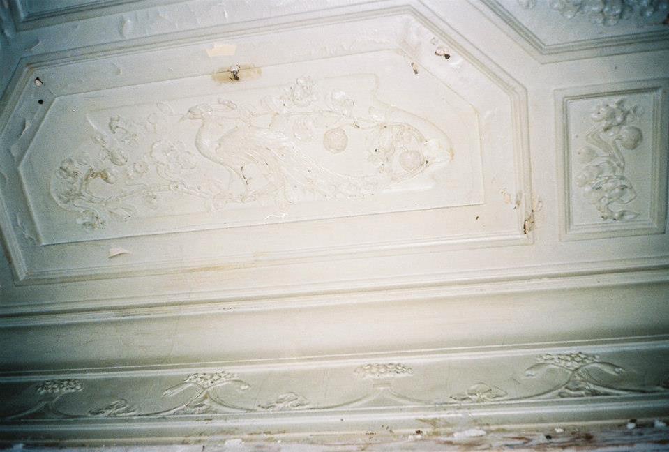 Лепной декор потолка кабинета, стилизованный под дерево. Изображение сидящего павлина