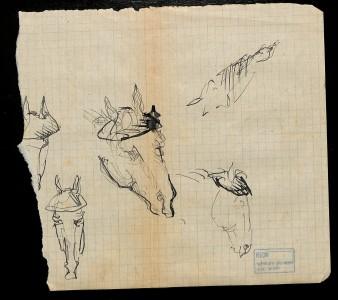 Набросок. Голова лошади. Из собрания Музея М. А. Булгакова